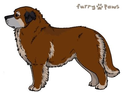 Furry Paws // WCT Kip's Esposito [Lla 3STM 21HH 1.342] *BoB*'s Kennel