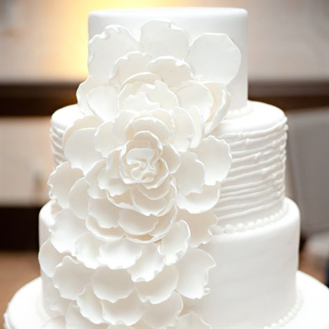 A white sugar flower cascaded down the couple's elegant cake. Simple, classic, slightly modern twist.