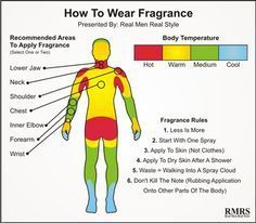 """How to Wear Fragrance -- this is one graphic in a post on the post """"Introduction To Fragrance, Cologne, Toilete & Perfume 