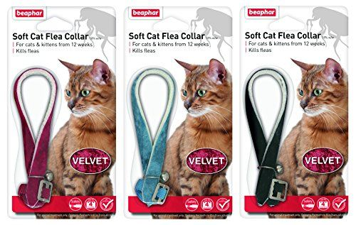 buy now   									£3.55 									 									Cat Flea Collar – Velvet Soft flea cat collar available in red, blue or black velour finish. Suitable for cats over 12 weeks old, and effective against fleas for  ...Read More