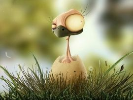 Funny Baby Bird