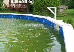How to take care of water in your above ground pool and stop it from turning green and cloudy for How to care for a swimming pool