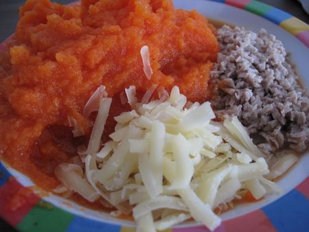 Potiron carotte veau gruyère
