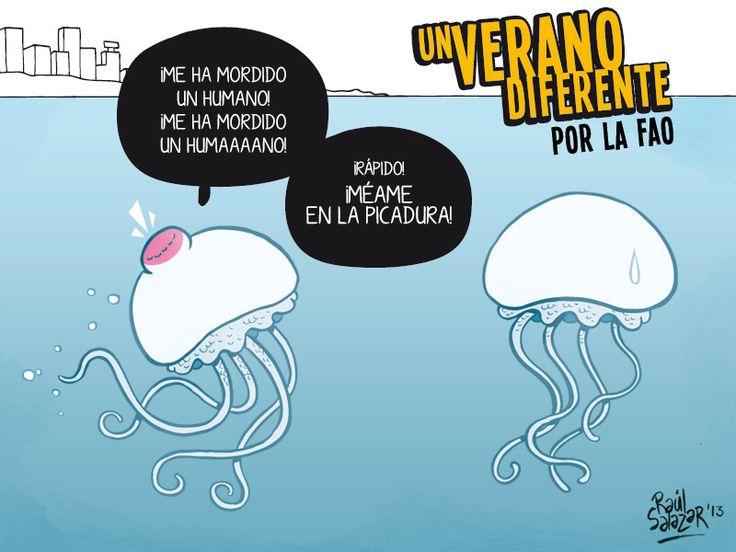 Un verano diferente: Comer medusas