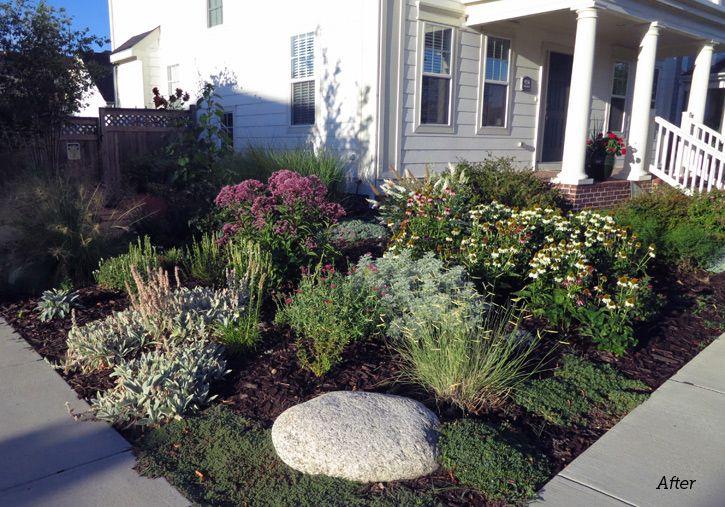 17 Best images about garden ideas on Pinterest Slug