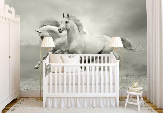 Fototapete Pferde im Galopp von K&L Wall Art | wall-art.de
