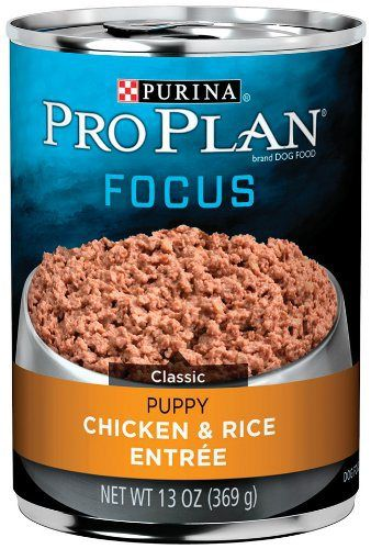 Purina Pro Plan Wet Dog Food, Focus, Puppy Chicken & Rice Entree Classic, 13-Ounce Can, Pack of 12 - http://www.thepuppy.org/purina-pro-plan-wet-dog-food-focus-puppy-chicken-rice-entree-classic-13-ounce-can-pack-of-12/