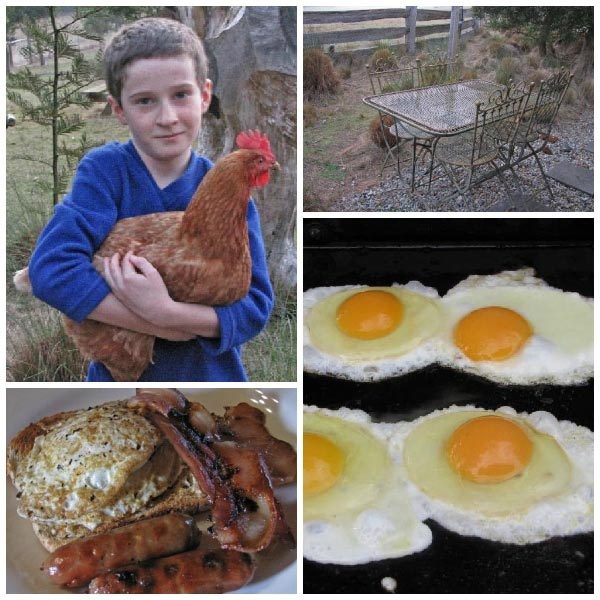 Tin Dragon Trail Cottages: Farm Fresh Eggs, Bacon and Sausages for breakfast.