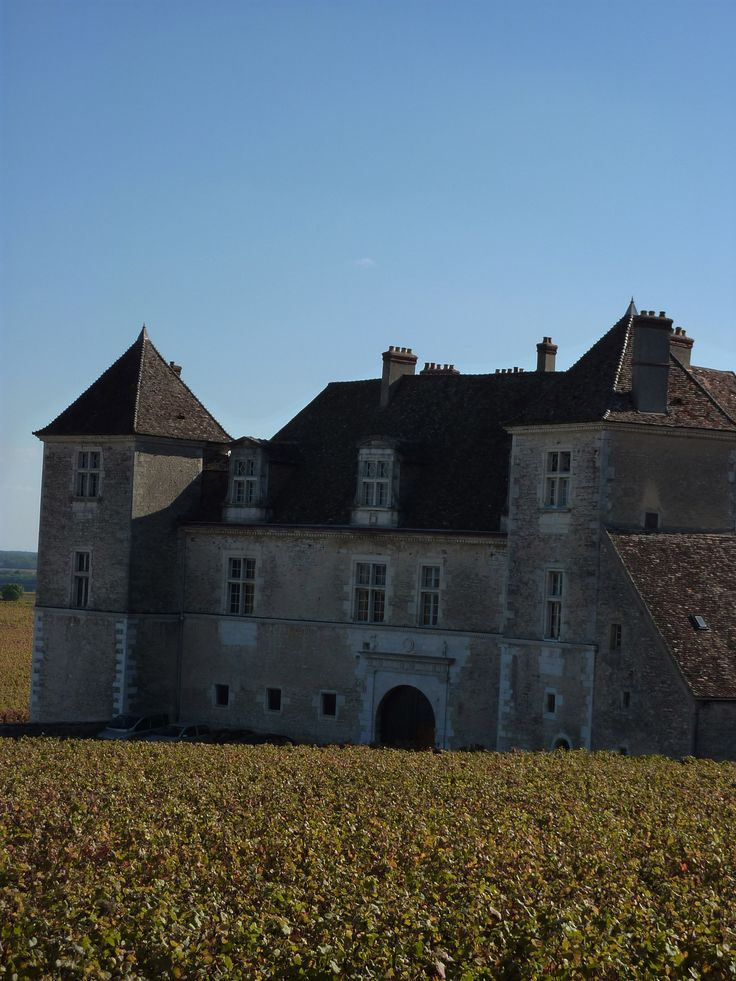 """Discover Dijon : guided tours for individuals and groups, packages, shop and leisure Circuit dans le vignoble - """"BOURGOGNE - 1/2 journée"""""""