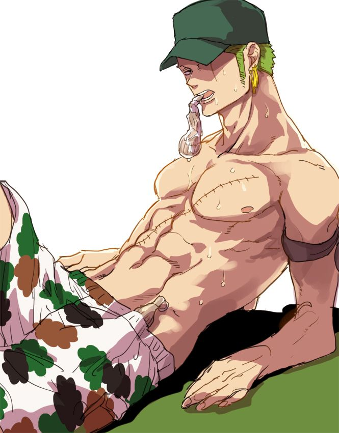 Roronoa Zoro, One Piece