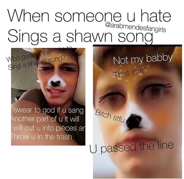 "♡ Well this has happened to me. The bitch has her own group named ""Shane Mendes"" ....Its SHAWN!"