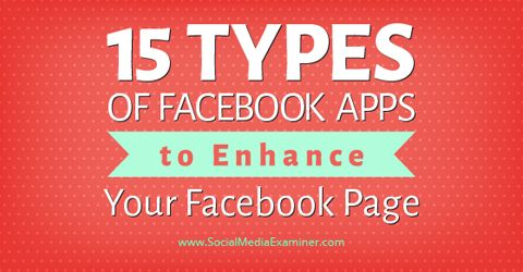 15 types of facebook apps. Add custom tabs to a Facebook page, you can use HTML to add menus or whatever you like there. Apps for adding other social media feeds and contests, sweepstakes etc.