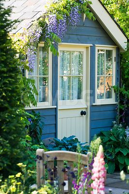 Love this look...Holly hocks and wisteria and cone flowers...Blue painted summerhouse with wisteria growing over