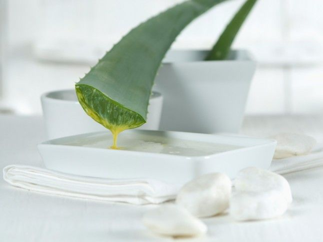 Aloe Vera Juice Benefits: They Are Endless… | Marie Claire