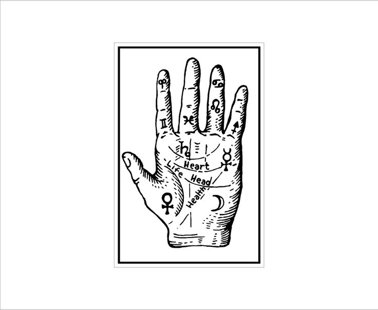 Amazing Thrill Murray Coloring Book 42 Palm Reading chart sign