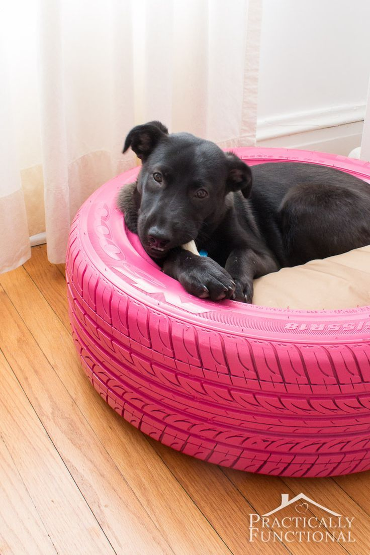Turn an old tire into a dog bed! This looks so easy to do!