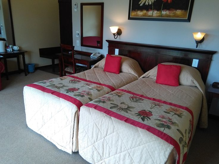 Executive room - Twin (bed view)