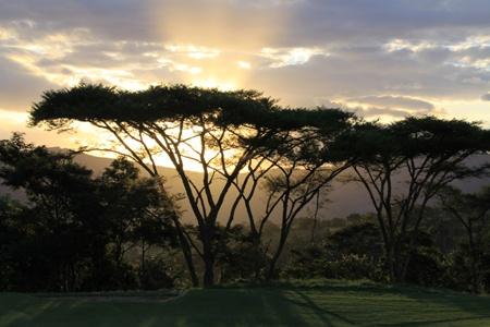 Leopard Rock - Postcard sunsets.