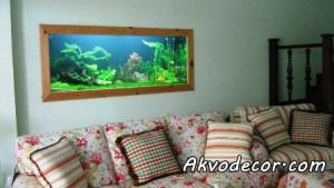Toko Aquarium Air  Tawar