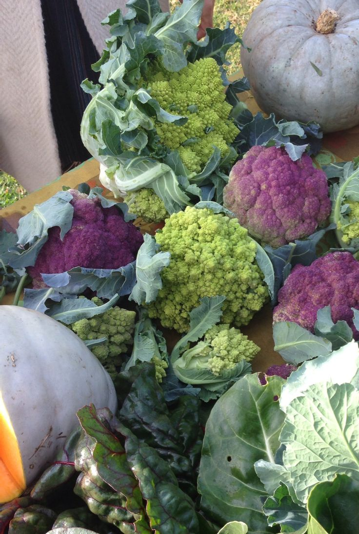 Gorgeous romanesco broccoli and cauliflower