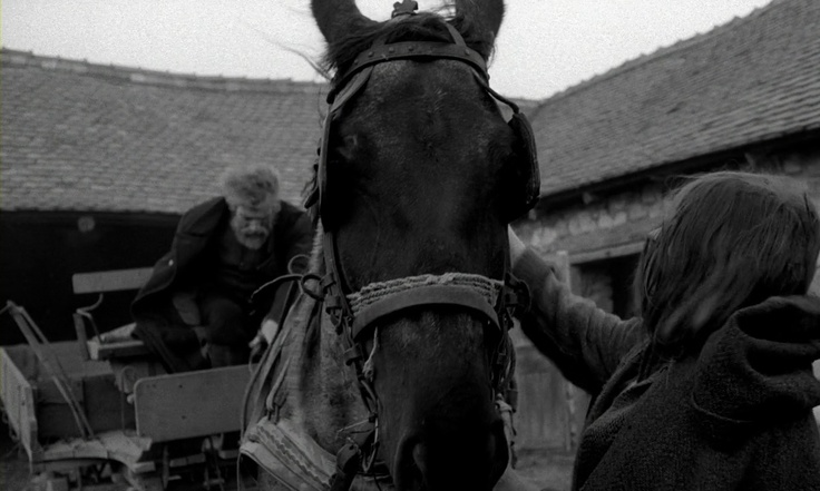 """""""El caballo de Turin"""" - Béla Tarr"""