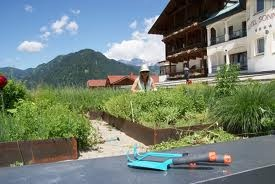 Hotel Sonnhof - #herbs directly in front of the hotel #alpendorf
