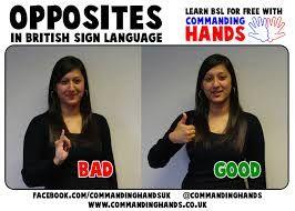 Image result for commanding hands bsl