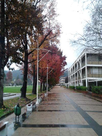 A rainy winter day at the Universidad de Concepcion