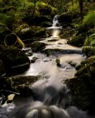 A Woodland Creek By The Road Up To Dalsnuten, Sandnes. Royalty Free Stock Photo, Pictures, Images And Stock Photography. Image 14956272.