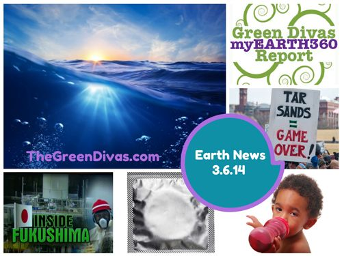 Green Divas myEARTH360 Report: Environmental News Update 3.6.14