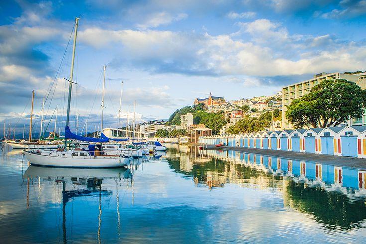 Wellington, capital da Nova Zelândia, é uma cidade vibrante que surpreende com atividades para ver e fazer e que são absolutamente gratuitas!