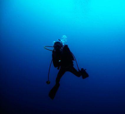 https://adventurefanatic.wordpress.com/2015/01/29/scuba-diving-in-goa-unforgettable-underwater-delight/ >> Scuba diving in Goa – Unforgettable underwater delight  #365Hops #Goa #India #ScubaDiving #scubadivinginGoa