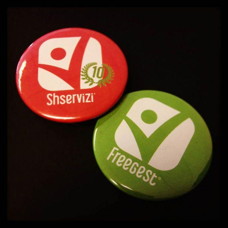 Pins SH servizi