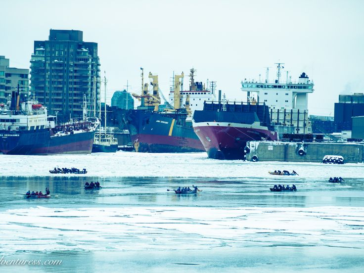 Ice Canoe Racing in Montreal's Old Port. 100% Quebecois, 100% Extreme