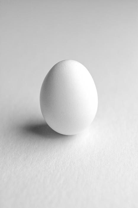 Which Came First? by Jeff Burton is an homage to the age old question—which came first, the chicken or the egg? The egg is photographed against a white background to bring out the delicate texture of the egg surface.