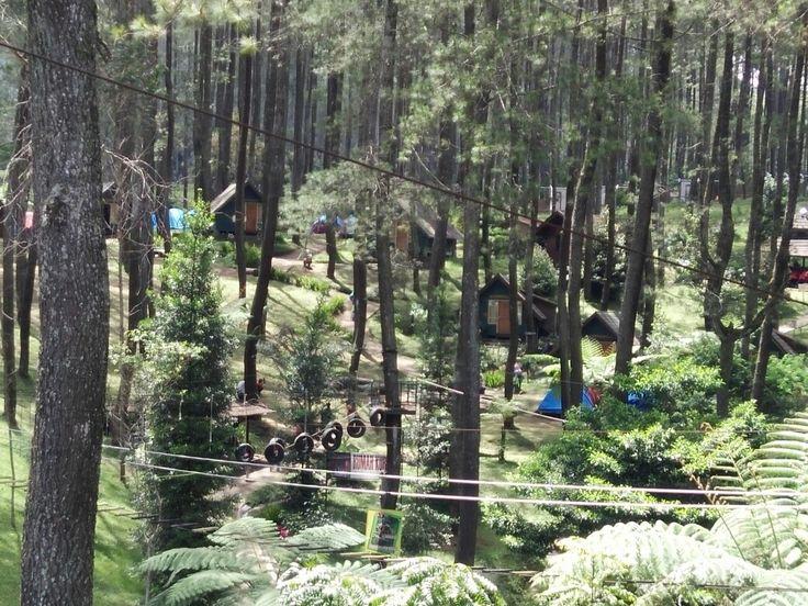 Hobbit lodge