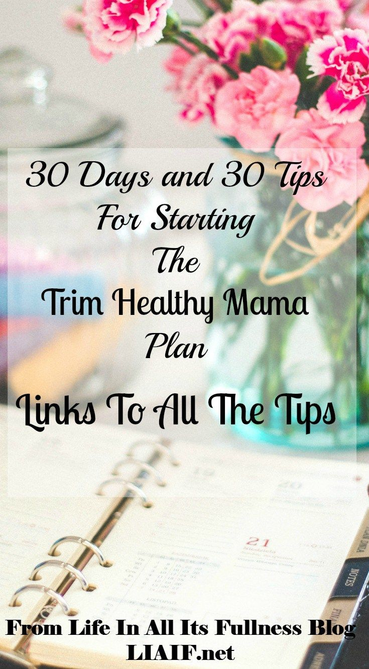 30 Days and 30 Tips for starting the Trim Healthy Mama plan - All the links