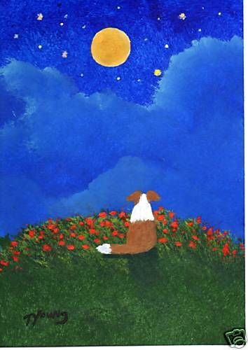 SHELTIE Red Border Collie dog Outsider Folk Art PRINT Todd Young MOON and STARS