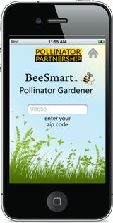 Need help choosing plants for pollinators specific to your area? Try the free BeeSmart Pollinator Gardener app from Pollinator Partnership, which includes nearly 1,000 pollinator-friendly plants.