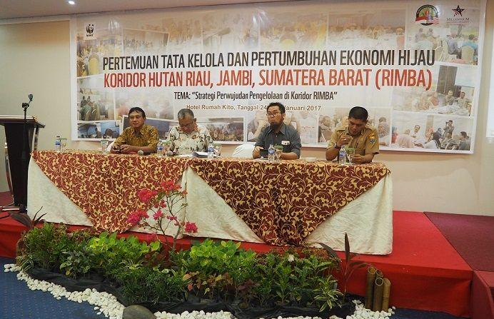 Jumlah Kawasan Hutan Riau, Sumatera Barat, Jambi Semakin Mengkhawatirkan
