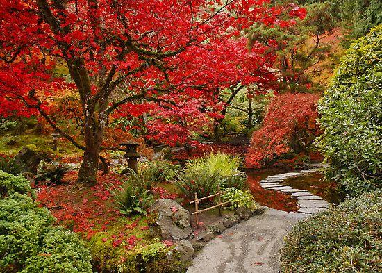 Japanese Garden In Butchart Gardens Vancouver Island