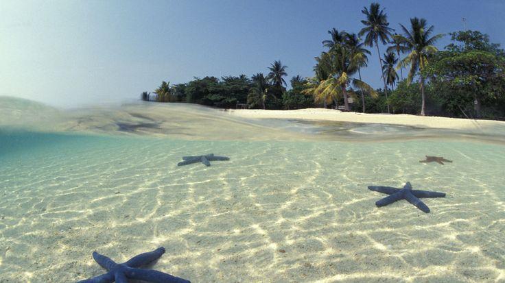 Endless Horizon    Indonesia