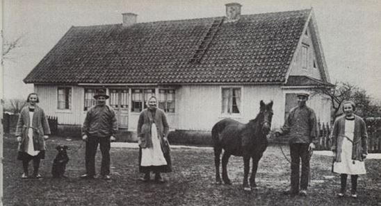"A beloved Öland horse or pony, the mare Lilly, with her family in 1922. It is a Swedish extinct breed from the Island of Öland. But it contributed to the creation of other breeds like the Estonian Pony and the Gotland pony, which retain its characteristics. Öland horse: Stoet Lilly - en av de absolut sista Ölandshästarna, fotograferad 1922 tillsamman med ""resten av familjen"" såsom brukligt var."