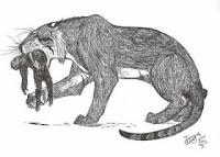 Machairodus Kabir http://evobig.blogspot.com/2012/08/mengenal-kucing-besar-zaman-prasejarah.html