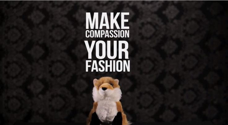 Woody Harrelson and the Humane Society share a fun video about fur