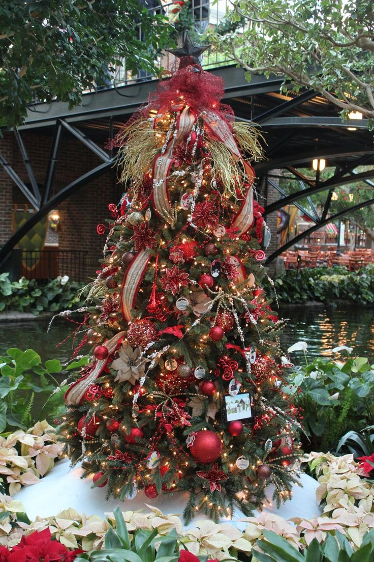 284 best christmas tree images on pinterest christmas gaylord opryland parade of trees decorated christmas
