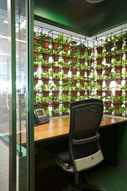 26 best green walls images on pinterest gutter garden for Garden office cube