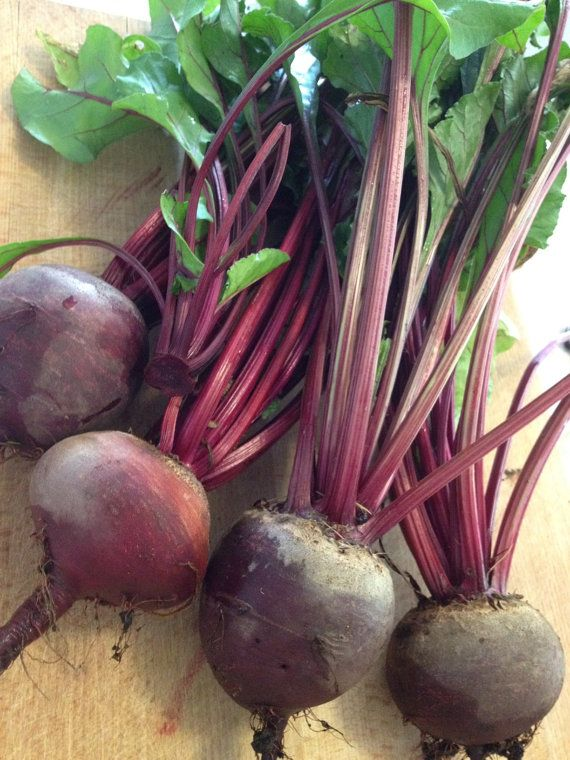 BEET VEGETABLE 30 Seeds (Green Top Bunching)   Fresh Seed, High Quality, Easy To Grow - High Germination, Vegetable Garden