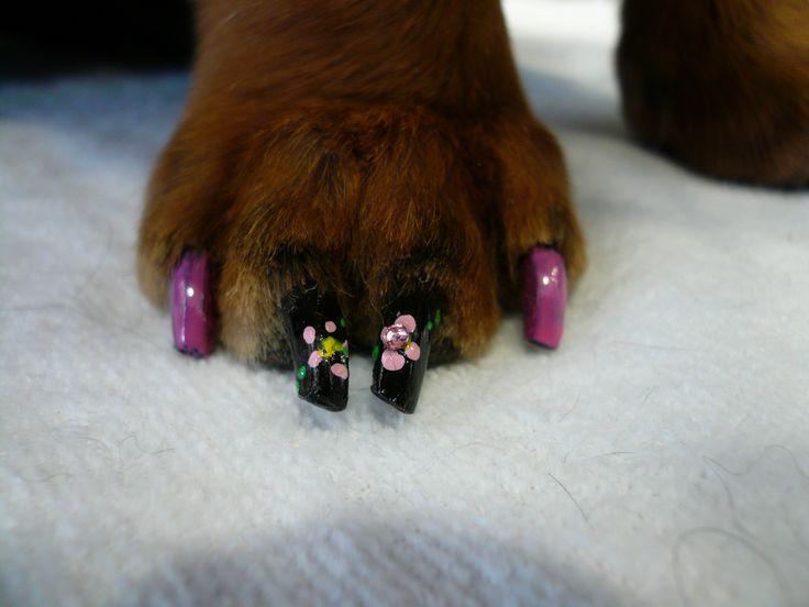 puppy paw nail art