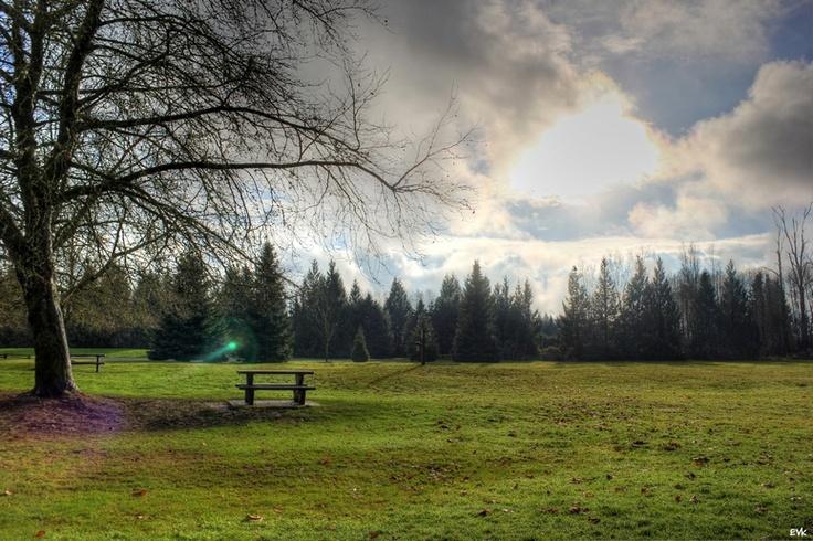 Derby Reach Park, Langley BC
